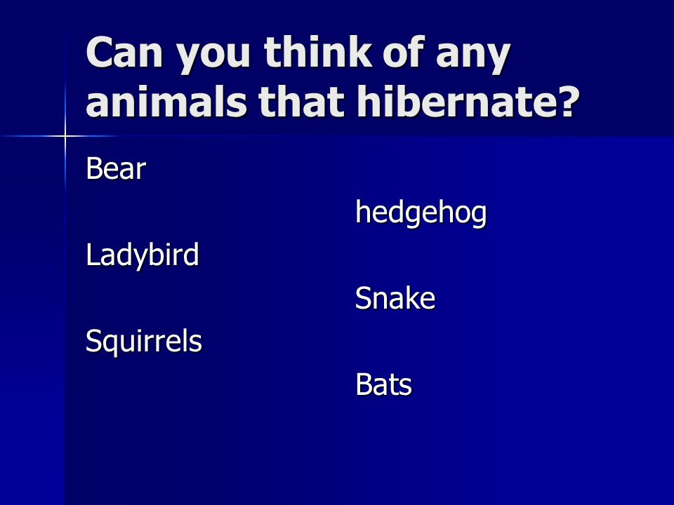 Can you think of any animals that hibernate