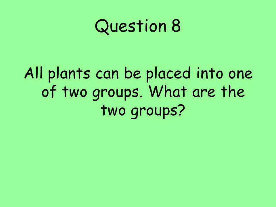 Question 8 All plants can be placed into one of two groups. What are the two groups