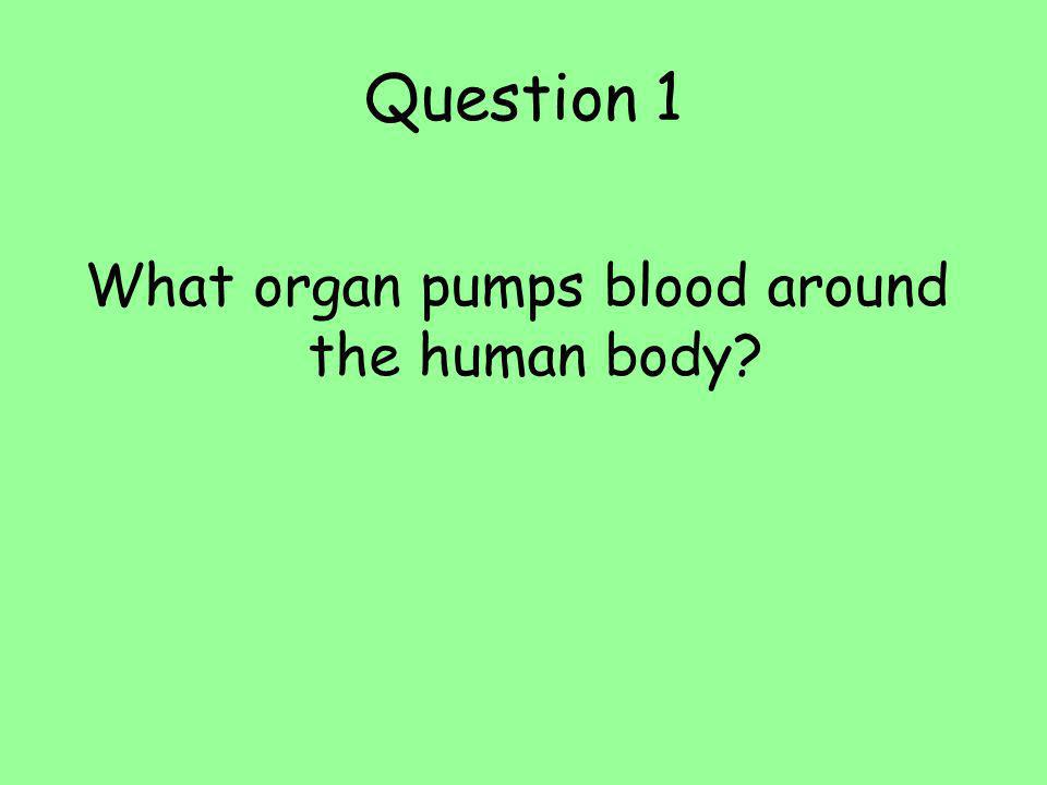What organ pumps blood around the human body