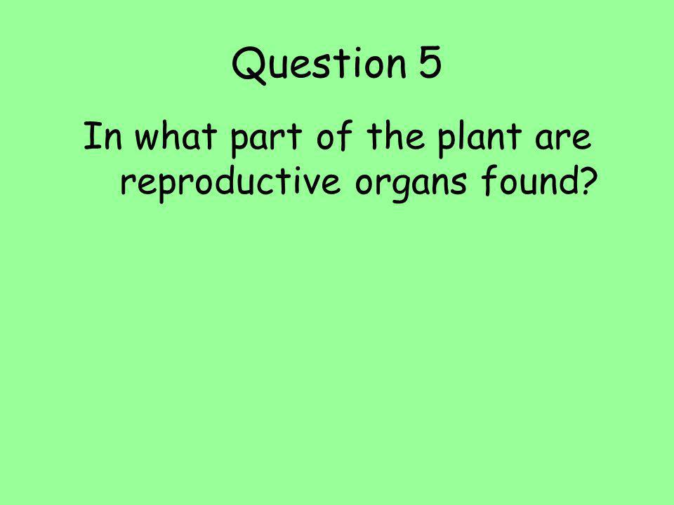 In what part of the plant are reproductive organs found