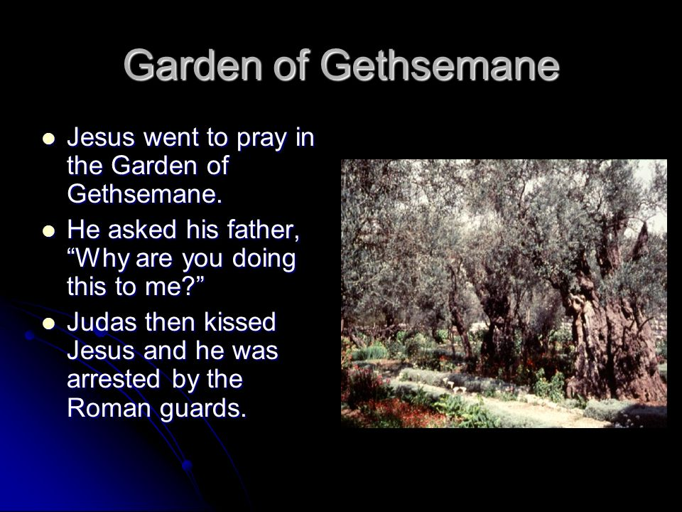 Garden of Gethsemane Jesus went to pray in the Garden of Gethsemane.