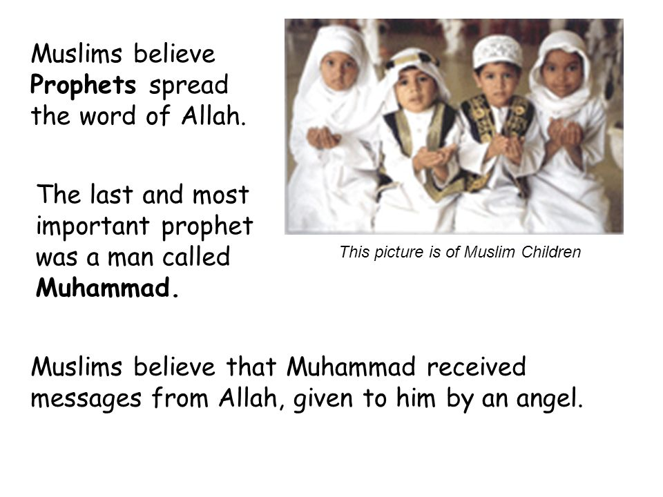 Muslims believe Prophets spread the word of Allah.