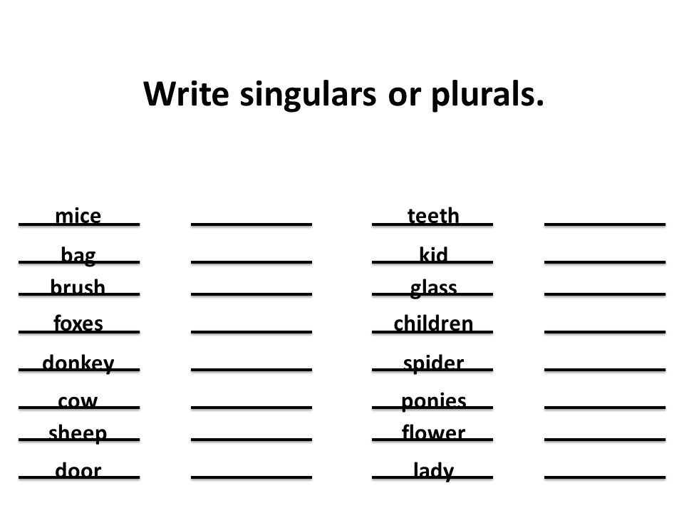 Write singulars or plurals.