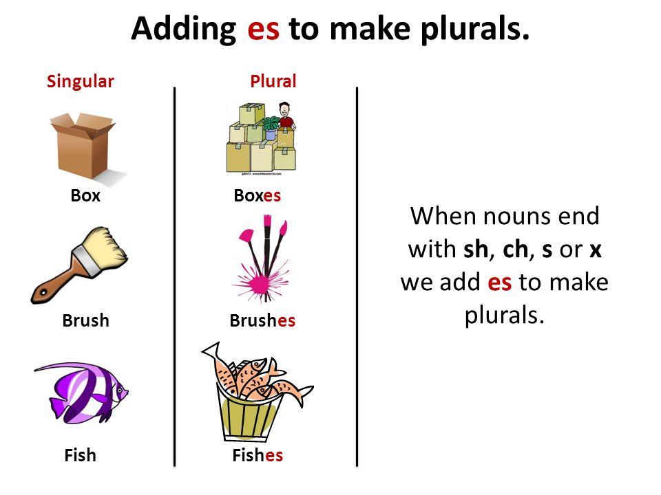 Adding es to make plurals.