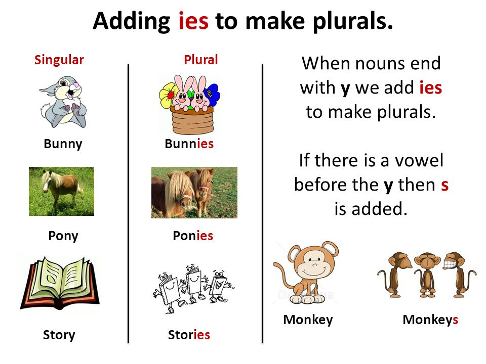 Adding ies to make plurals.