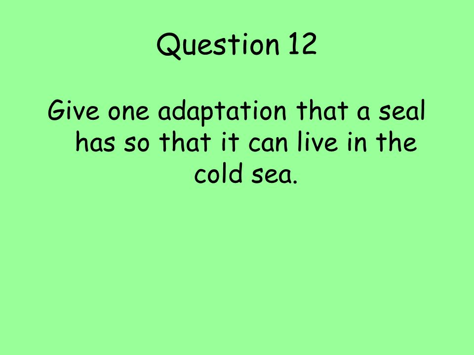 Question 12 Give one adaptation that a seal has so that it can live in the cold sea.