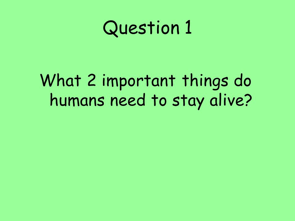 What 2 important things do humans need to stay alive
