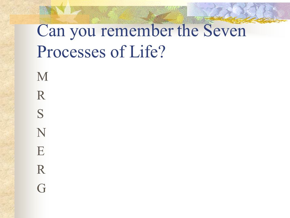 Can you remember the Seven Processes of Life