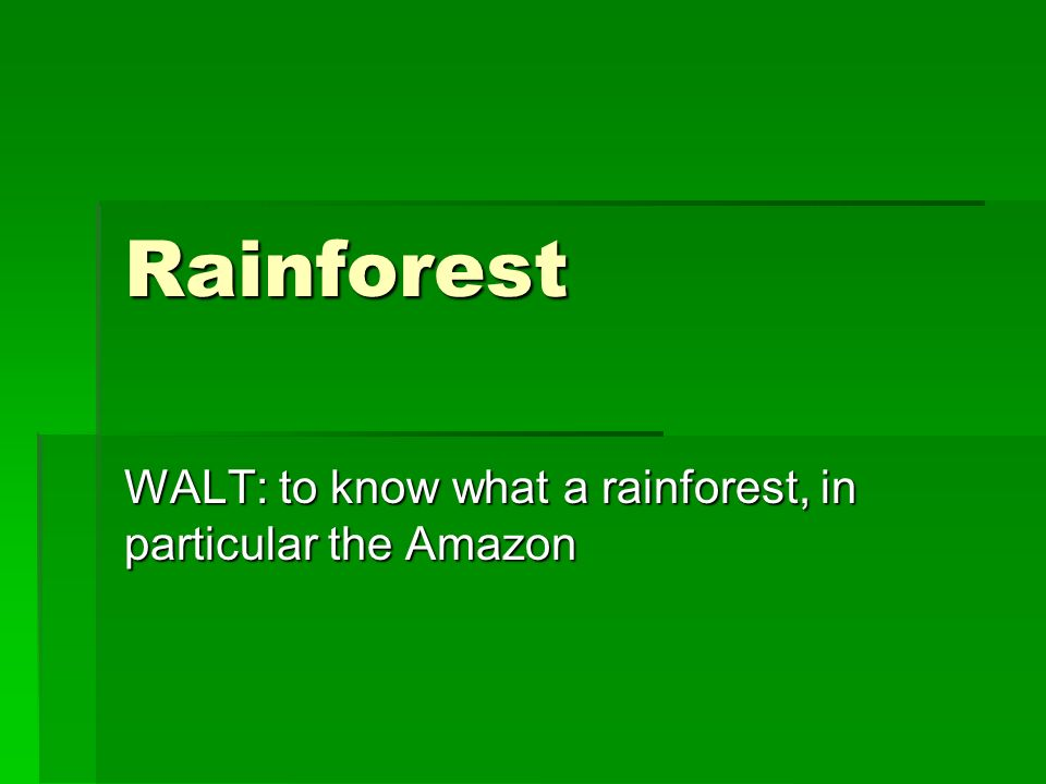 WALT: to know what a rainforest, in particular the Amazon