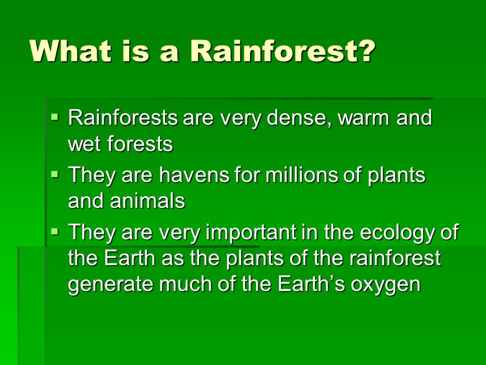 What is a Rainforest Rainforests are very dense, warm and wet forests