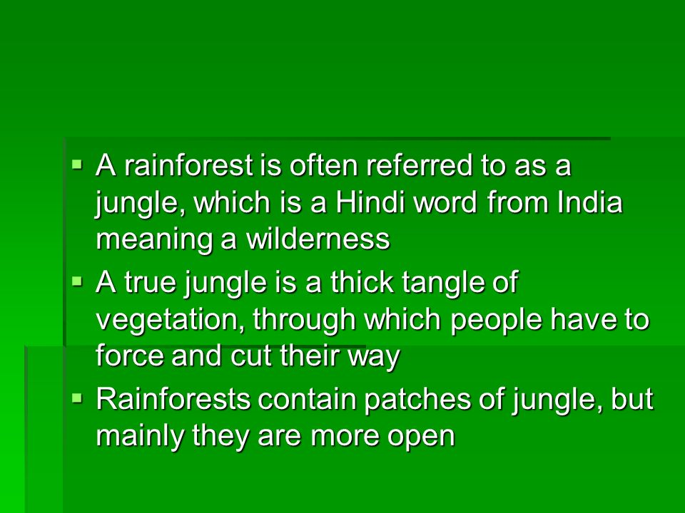 A rainforest is often referred to as a jungle, which is a Hindi word from India meaning a wilderness
