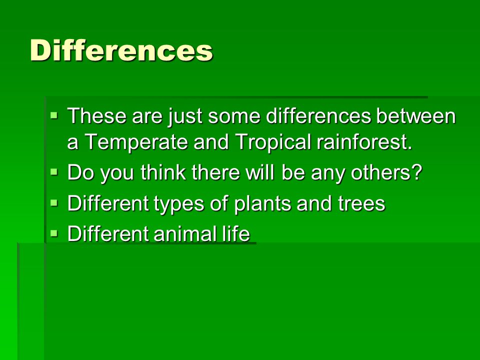 Differences These are just some differences between a Temperate and Tropical rainforest. Do you think there will be any others