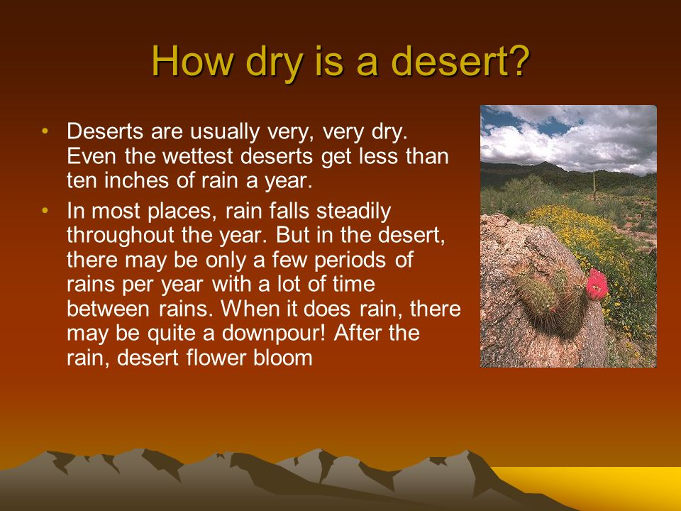 How dry is a desert Deserts are usually very, very dry. Even the wettest deserts get less than ten inches of rain a year.