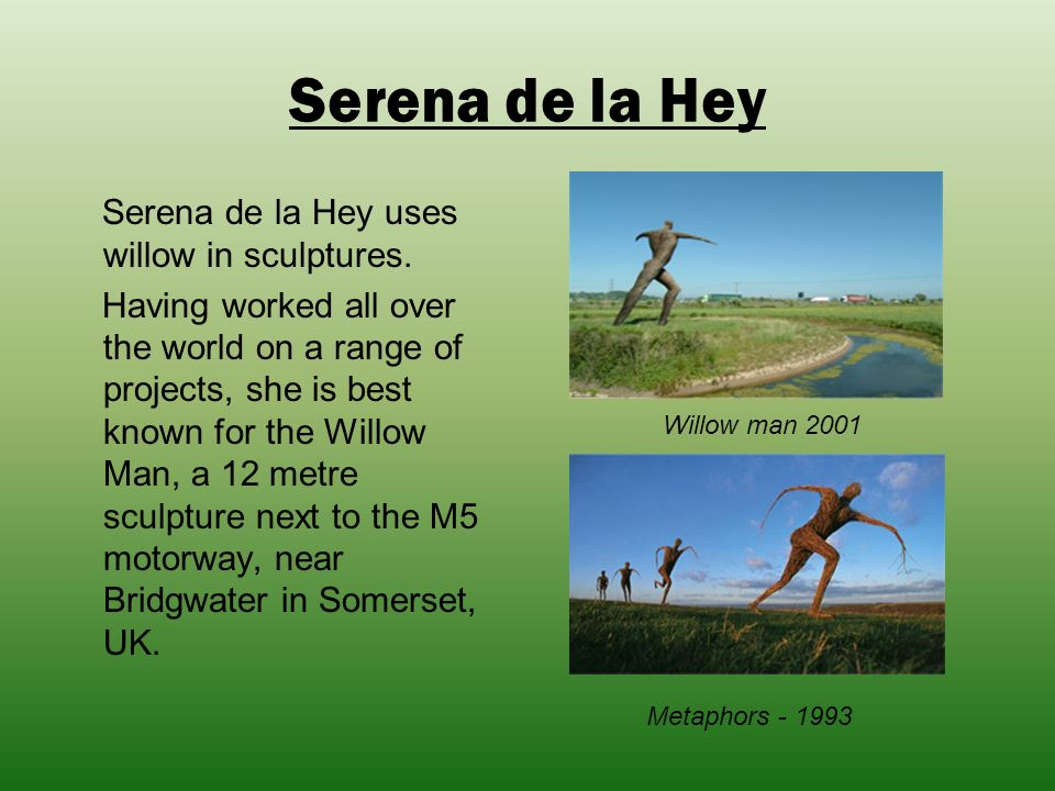 Serena de la Hey Serena de la Hey uses willow in sculptures.
