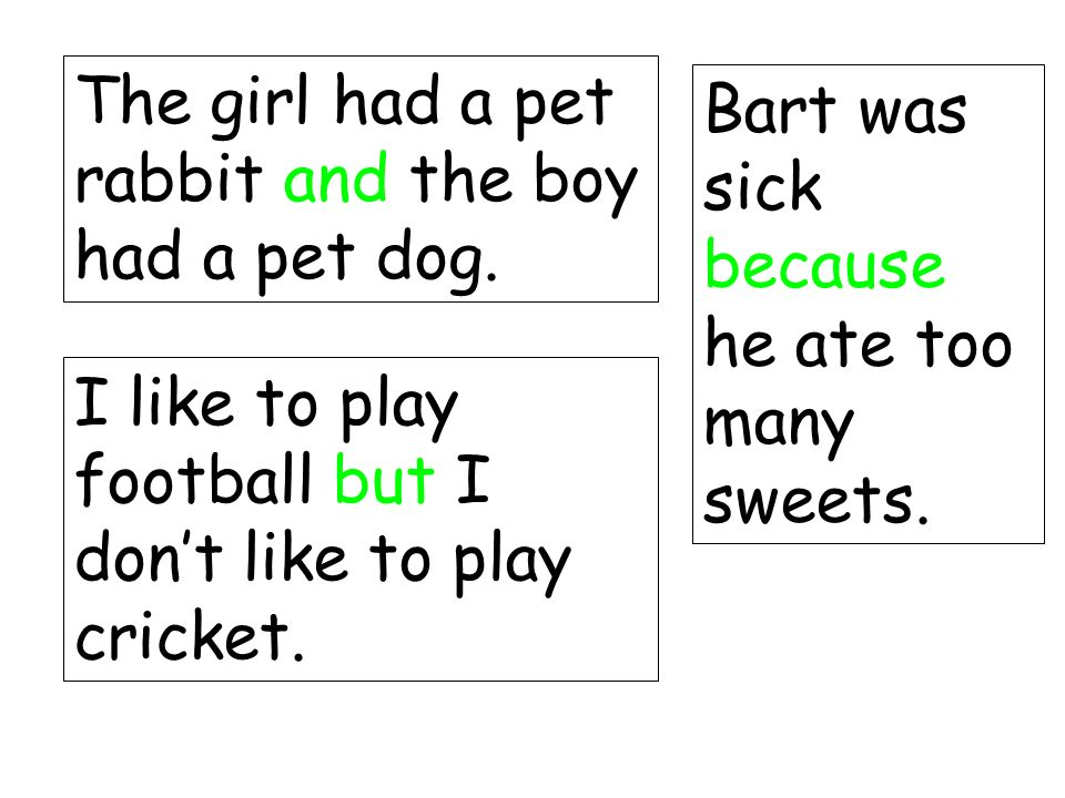 The girl had a pet rabbit and the boy had a pet dog.