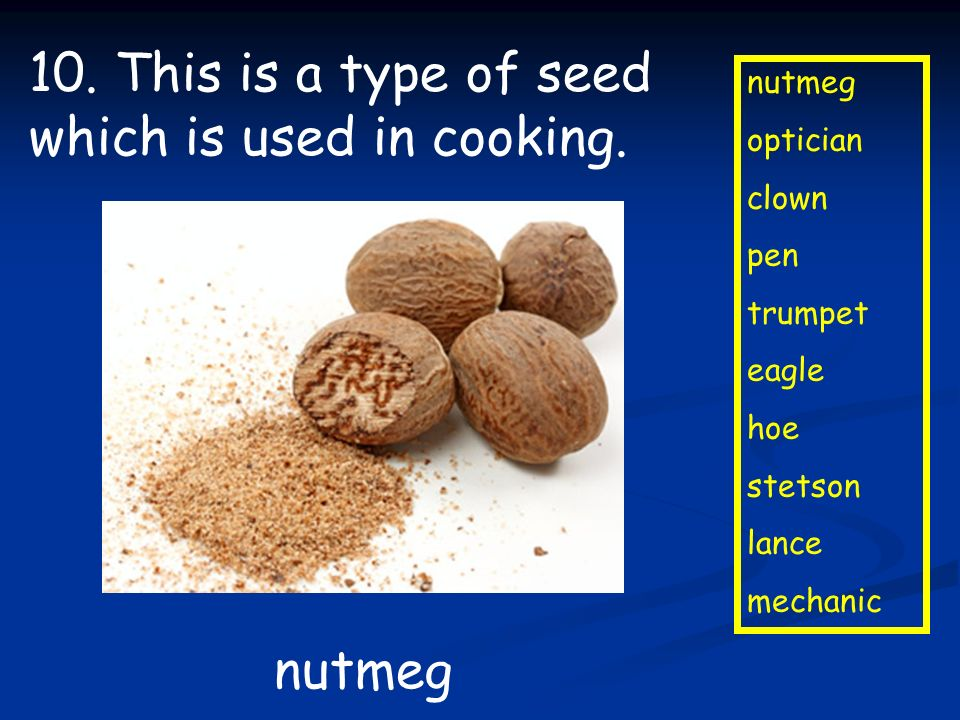 10. This is a type of seed which is used in cooking.