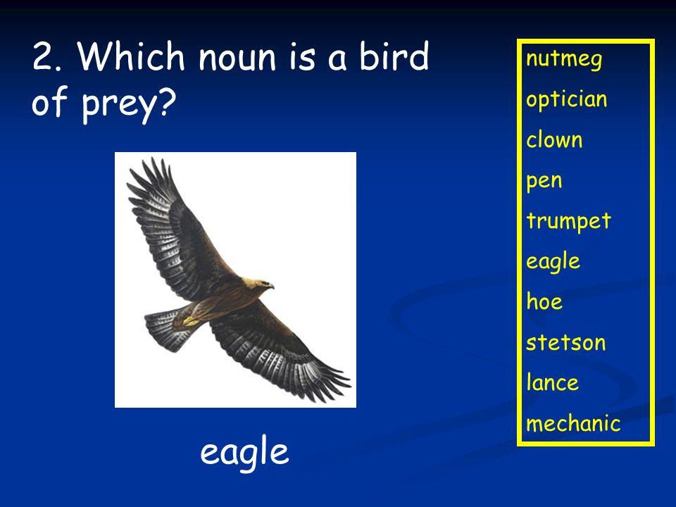 2. Which noun is a bird of prey