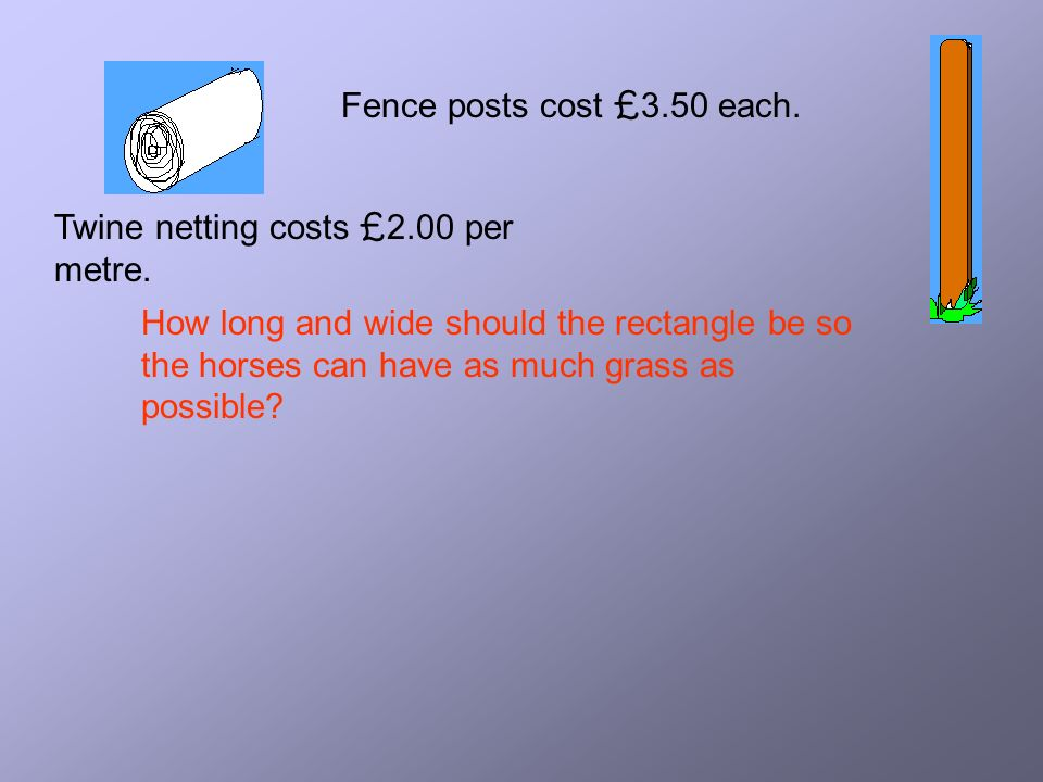 Fence posts cost £3.50 each. Twine netting costs £2.00 per metre.