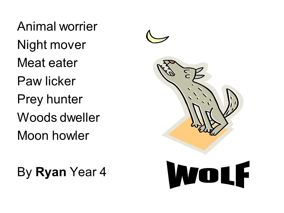 WOLF Animal worrier Night mover Meat eater Paw licker Prey hunter