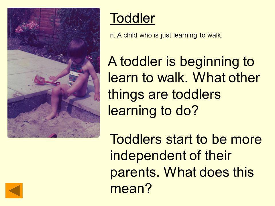 Toddler n. A child who is just learning to walk. A toddler is beginning to learn to walk. What other things are toddlers learning to do