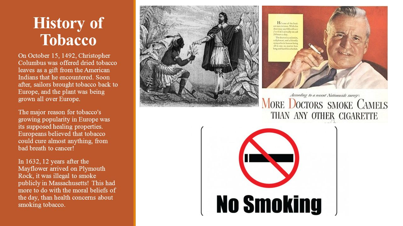 "tobacco history ""the pipe draws wisdom from the lips of the philosopher, and shuts up the mouth of the foolish,"" wrote wm thackeray a hundred years ago and to this day, pipe smoking retains a certain connotation of sophistication."