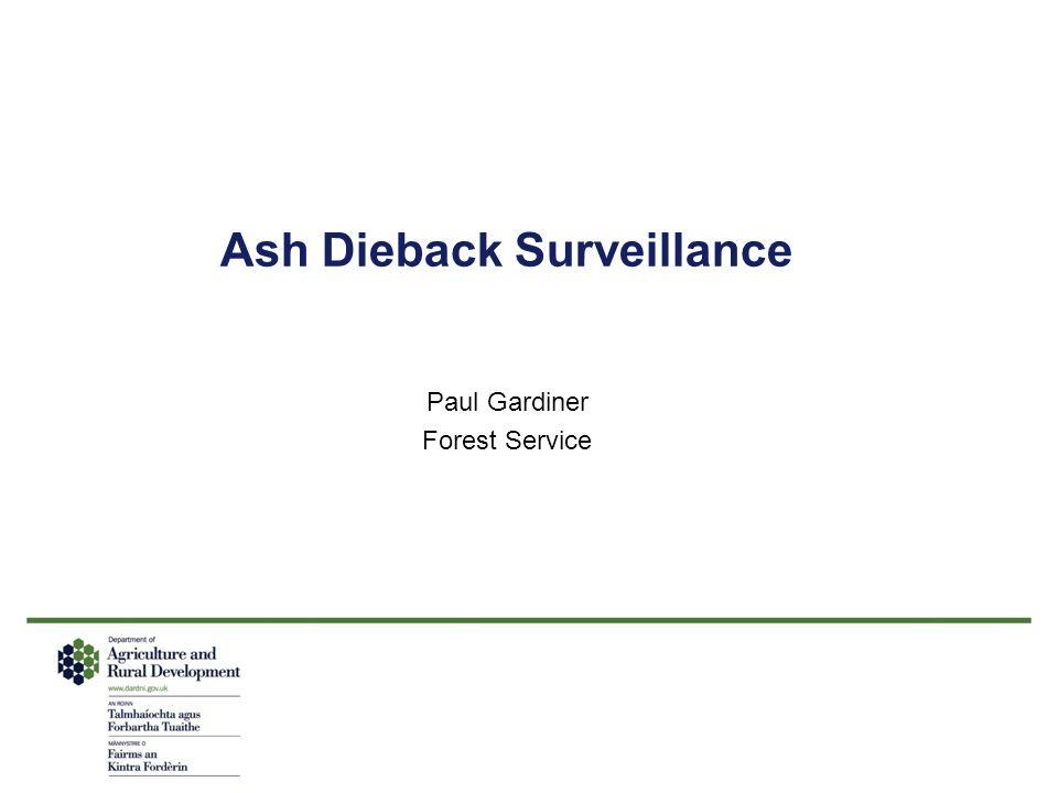 Ash Dieback Surveillance
