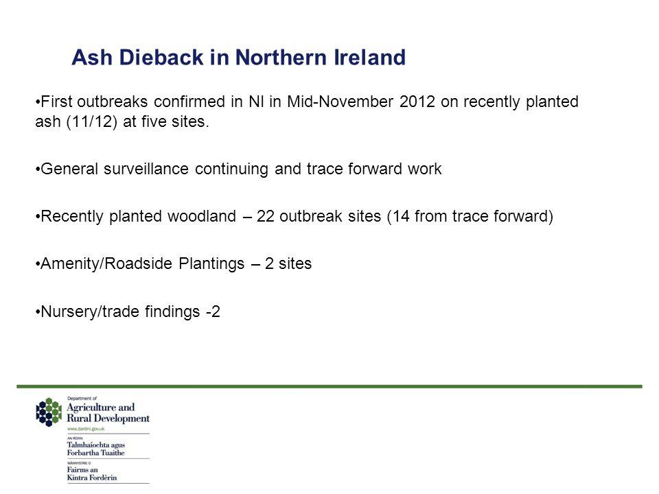 Ash Dieback in Northern Ireland