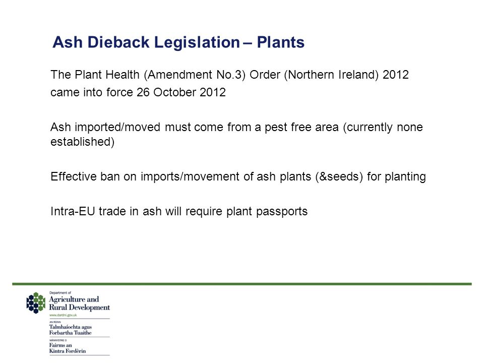 Ash Dieback Legislation – Plants