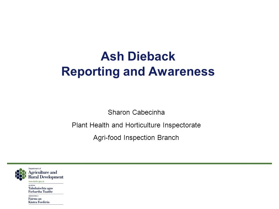 Ash Dieback Reporting and Awareness