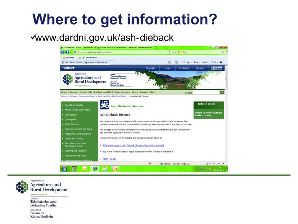Where to get information