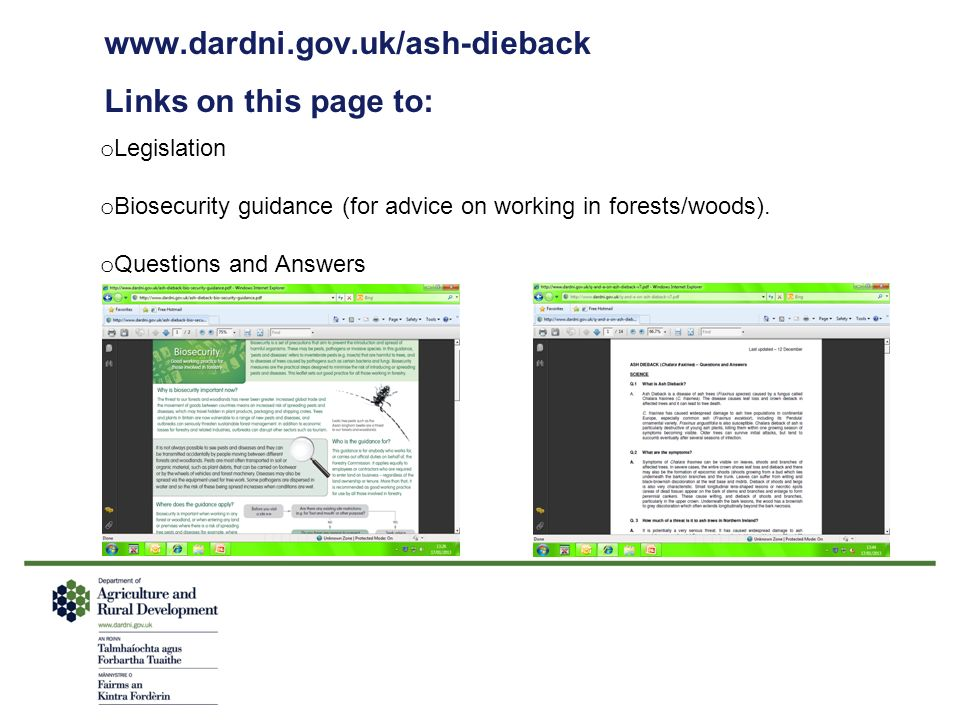 www.dardni.gov.uk/ash-dieback Links on this page to: