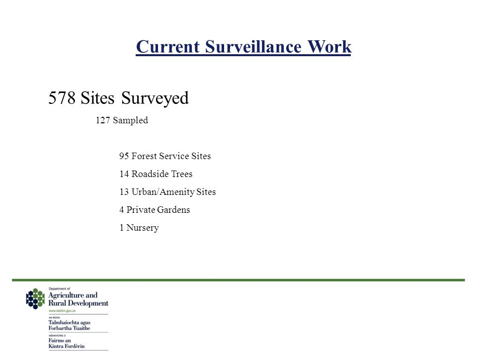 Current Surveillance Work
