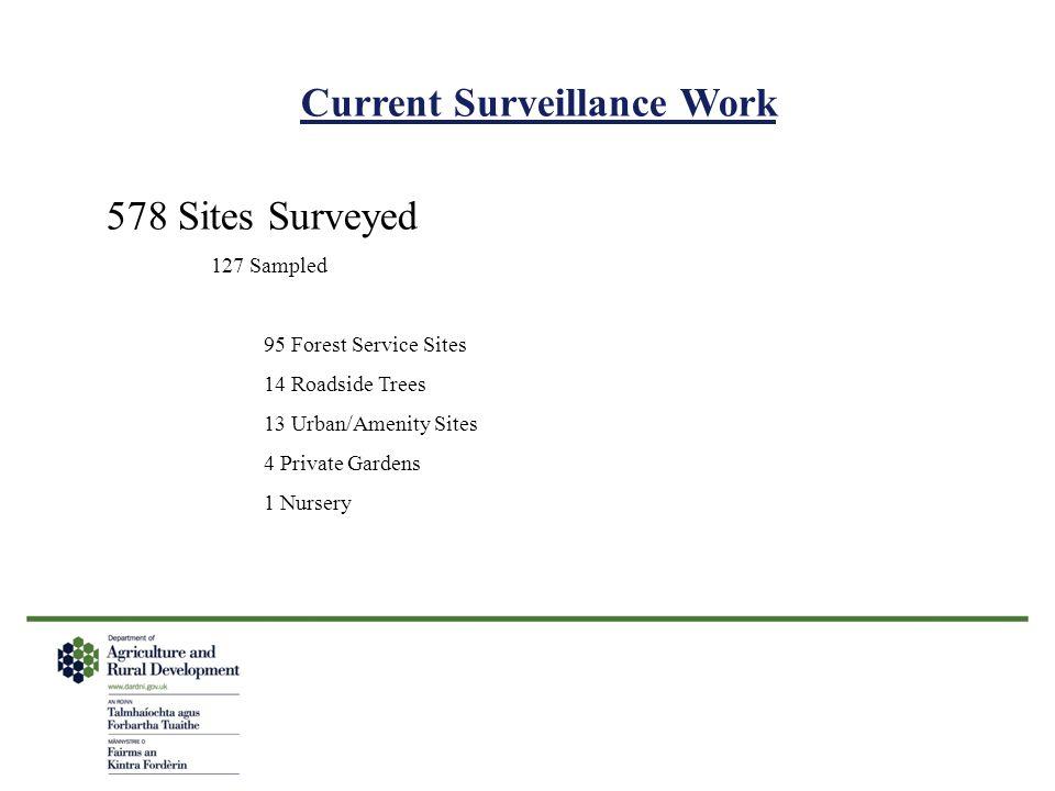 Current Surveillance Work