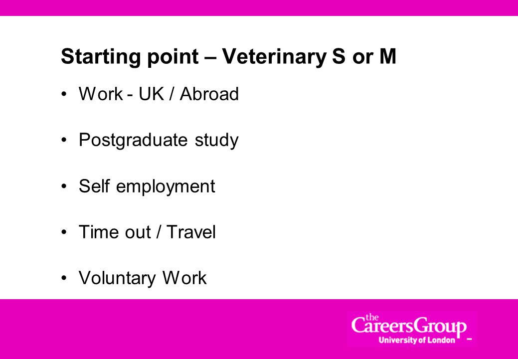 Starting point – Veterinary S or M