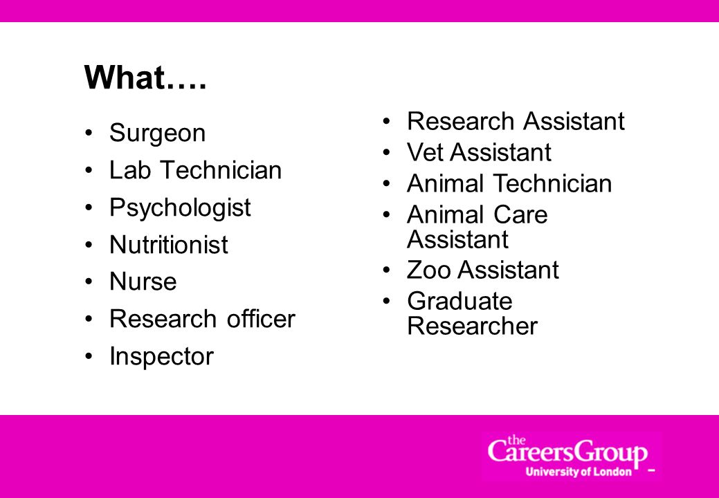 What…. Research Assistant Surgeon Vet Assistant Lab Technician