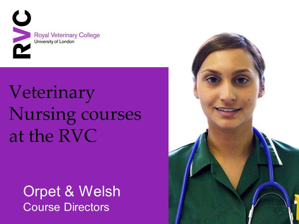 Veterinary Nursing courses at the RVC