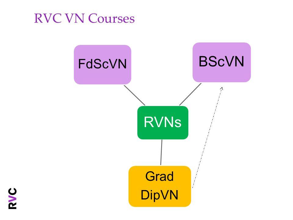 RVC VN Courses RVNs FdScVN BScVN DipVN Grad
