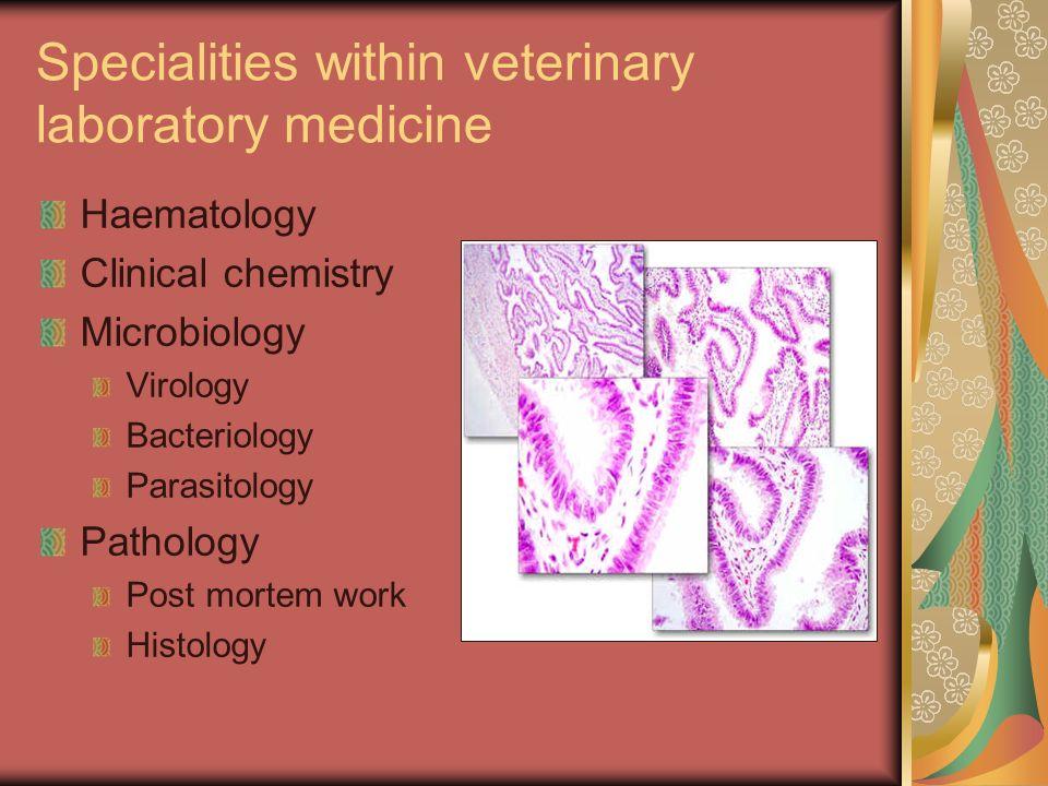 Specialities within veterinary laboratory medicine