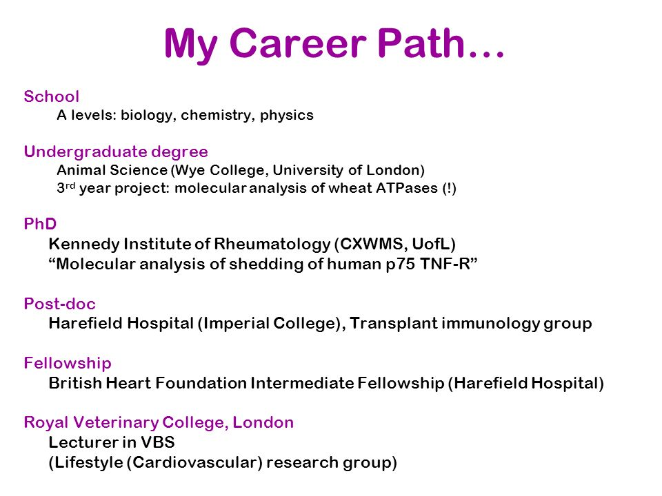 My Career Path… School Undergraduate degree PhD