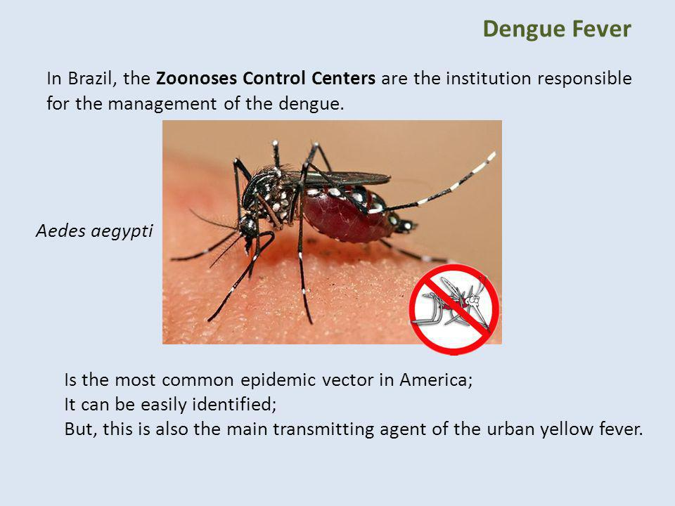 Dengue Fever In Brazil, the Zoonoses Control Centers are the institution responsible for the management of the dengue.