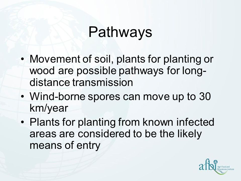 Pathways Movement of soil, plants for planting or wood are possible pathways for long-distance transmission.
