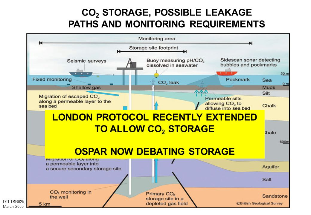 CO2 STORAGE, POSSIBLE LEAKAGE PATHS AND MONITORING REQUIREMENTS