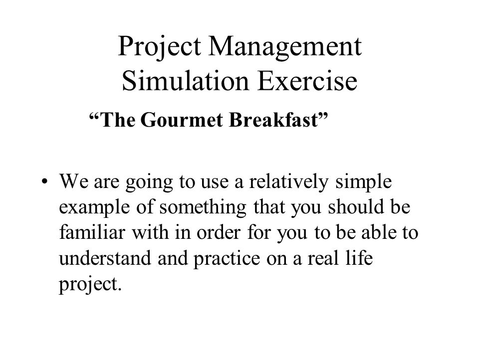 Project Management Simulation Exercise