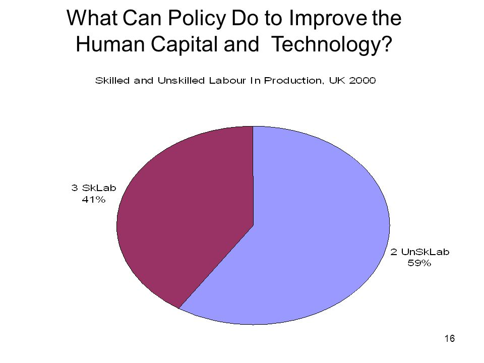 What Can Policy Do to Improve the Human Capital and Technology