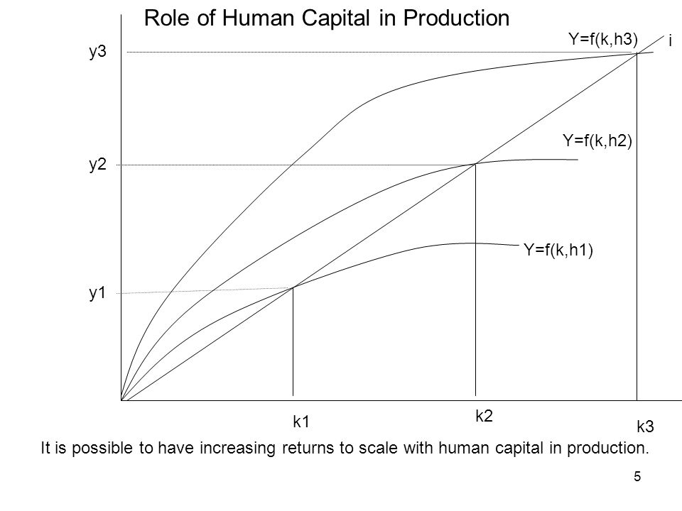 Role of Human Capital in Production