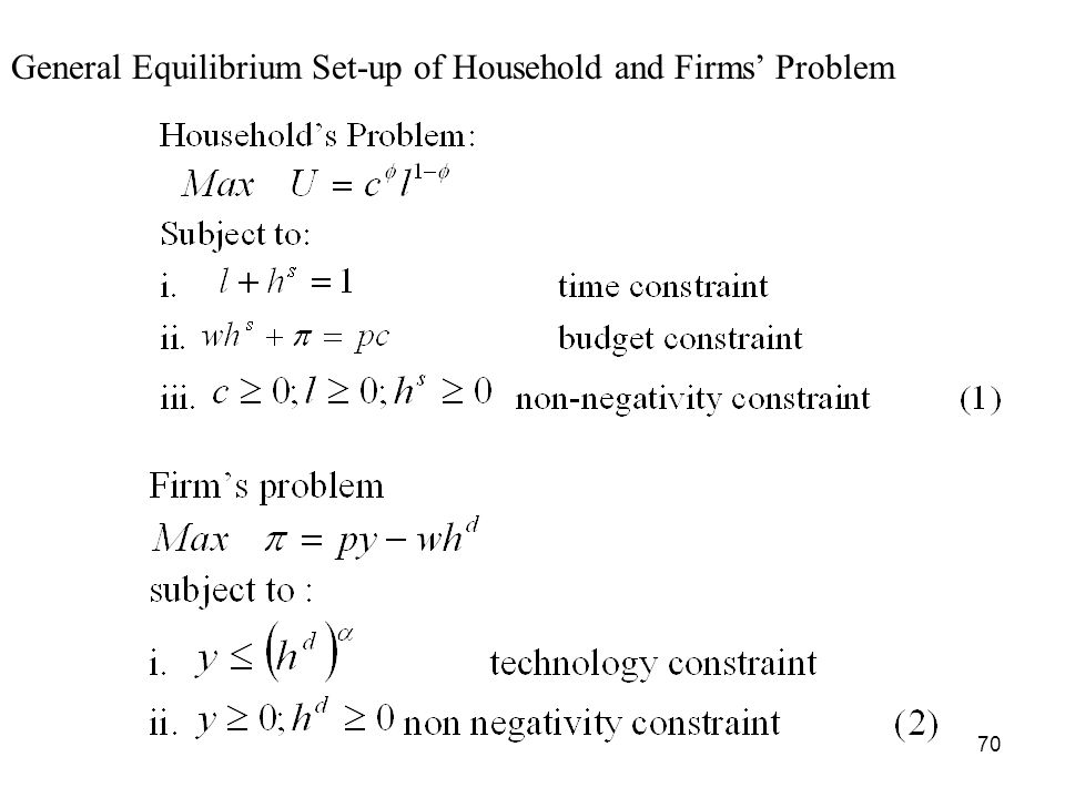 General Equilibrium Set-up of Household and Firms' Problem