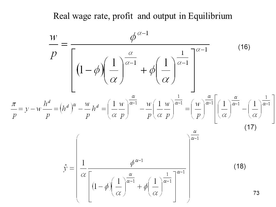 Real wage rate, profit and output in Equilibrium