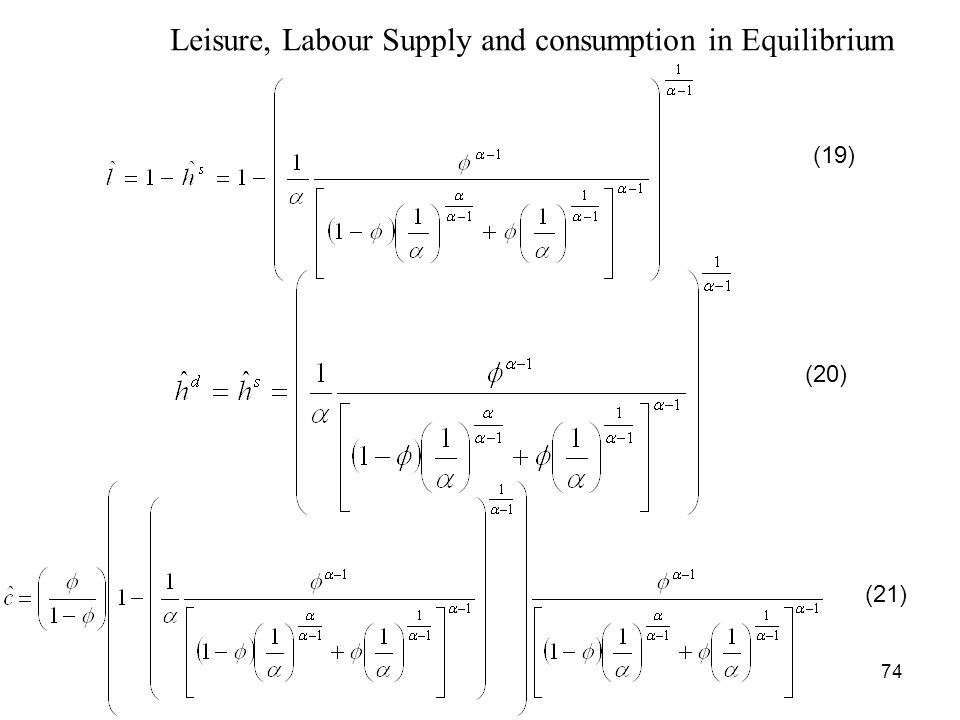 Leisure, Labour Supply and consumption in Equilibrium