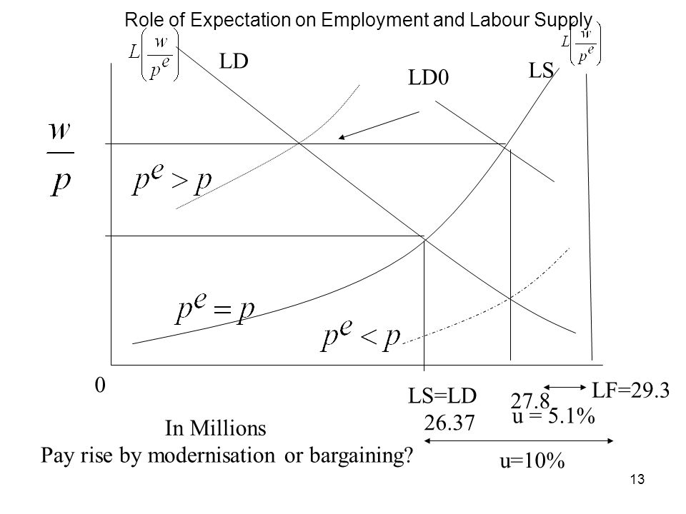 Role of Expectation on Employment and Labour Supply