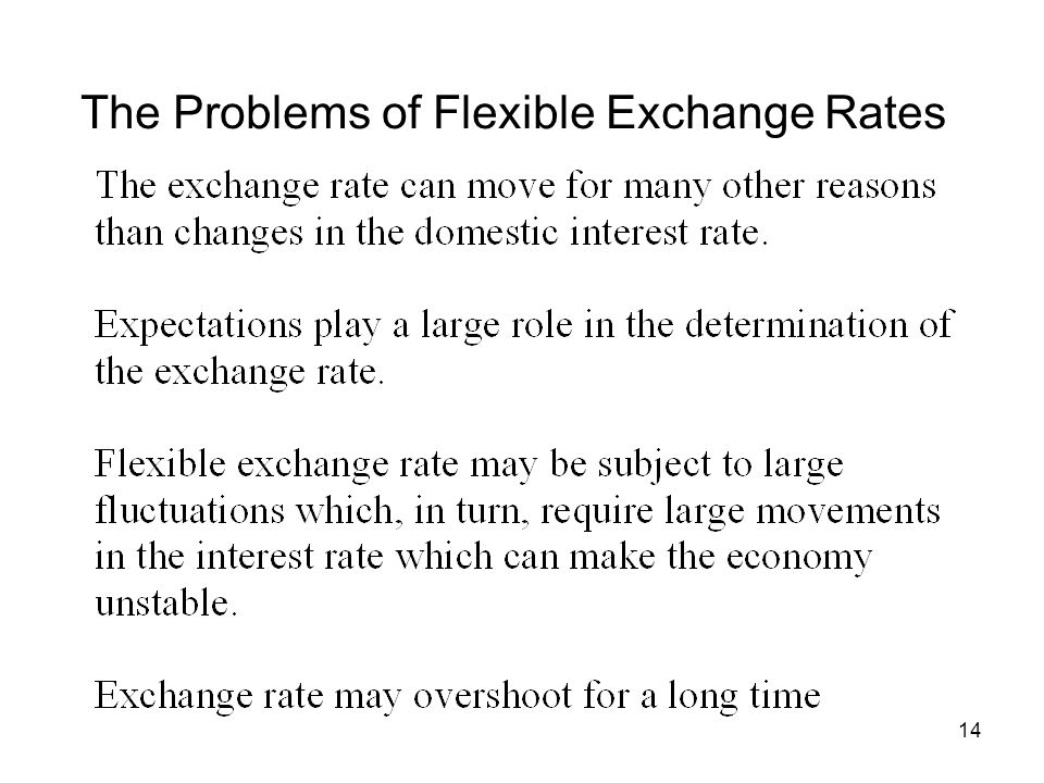The Problems of Flexible Exchange Rates